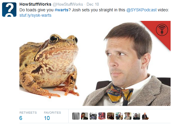 Do Toads Give You Warts Twitter