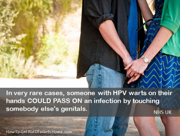 Genital herpes is transmitted through skin-to-skin contact, with the finger being a very low risk area 1